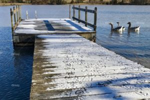 Open Water Swimming – Closed for Winter